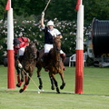 The Perfect Polo Match